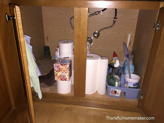 Deep Cleaning Your Half Bath - Under Sink